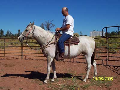 Sheba under saddle, Oct 2008